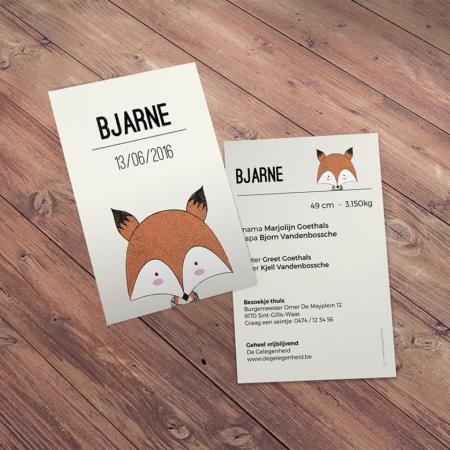 geboortekaartje Bjarne