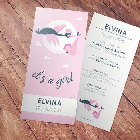Geboortekaartje Elvina